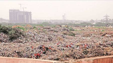 Dumping municipal waste on vacant plots: Swachh Bharat, the Noida way