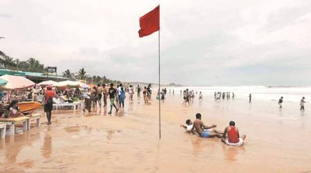 Successful Christmas, New Year season shows Goa safe: Minister