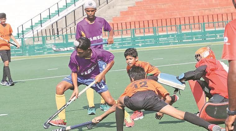 hockey news, sports news, indian express news, latest news
