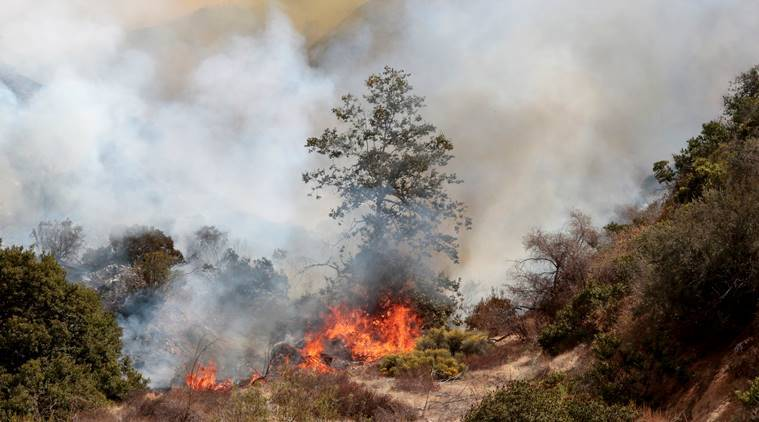 La Tuna Canyon fire, Los Angeles wildfire, California wildfire, Eric Garcetti, World news, Indian Express