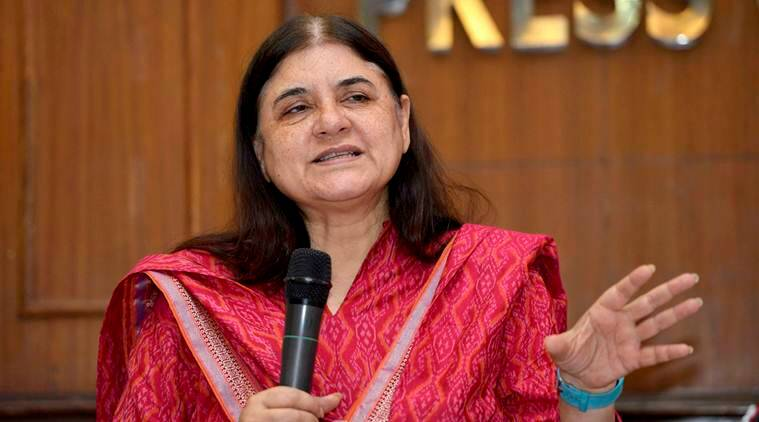Ration, Ration for women, Ration for infants, Cash ration, Cash transfers to replace ration, Maneka Gandhi, WCD ministry, India news, Indian Express