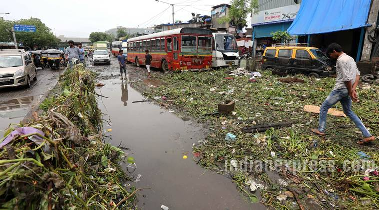 Mumbai Swamp Comparing July 2005 To August 2017 The