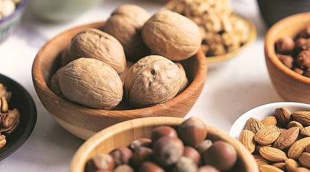 Consuming olive oils, nuts may up general intelligence: Study