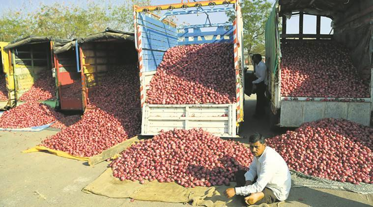 onion price, tomato price, onion hoarding, agriculture produce, crop prices, farmers, agriculture, indian express news