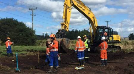 Damaged fuel pipeline in New Zealand restored: Officials