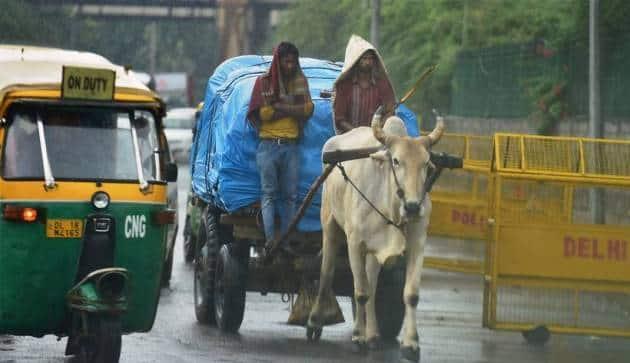 delhi rains, delhi weather, noida rains, delhi weather update, delhi weather forecast, delhi traffic, delhi rain pictures, #delhirains, delhi temperature, delhi pictures, delhi