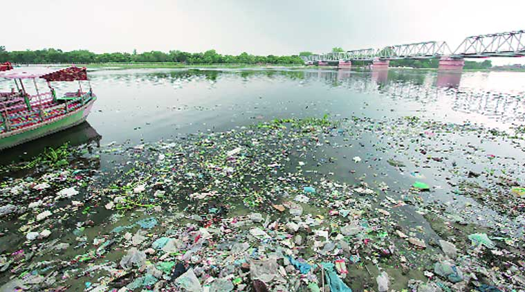 Maharashtra River Pollution, River Pollution, River Pollution Maharashtra, Maharashtra News, Mumbai News, Latest Mumbai News, Indian Express, Indian Express News