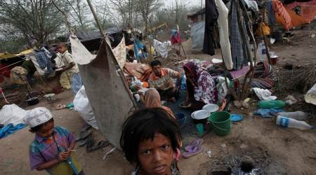 WHO appeals for contributions for health services to Rohingya refugees