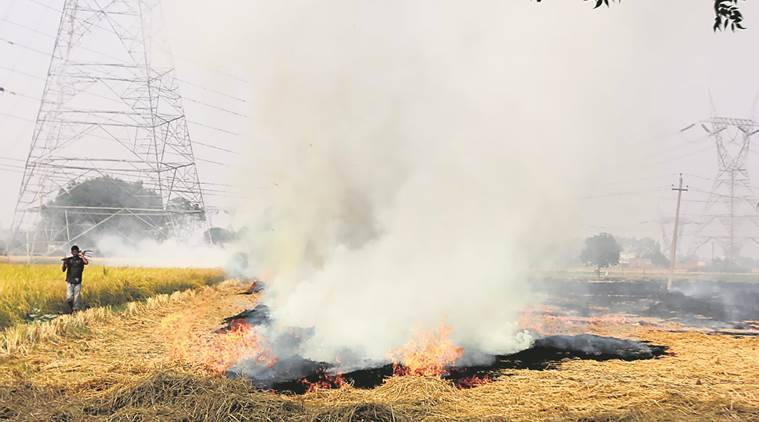 delhi pollution, delhi air pollution, Delhi air, delhi smog, delhi air quality, stubble burning, crop burning, delhi news, indian express news