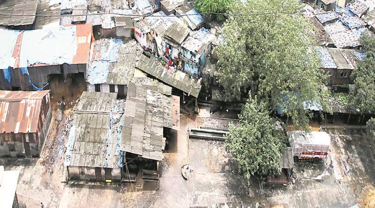 Illegal cattle sheds, BMC, Western Express Highway , Dahisar river, Mumbai news, Indian Express News
