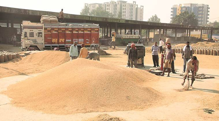 Truck unions, Punjab Truck unions, paddy harvest, Punjab govt, Consumer Affairs Ministry, indian express news