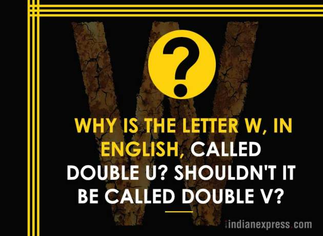life's biggest questions, weird life questions, 10 most funny questions, life, philosophical questions about life, quirky questions, questions about life, funny picture gallery, Indian express, Indian express news
