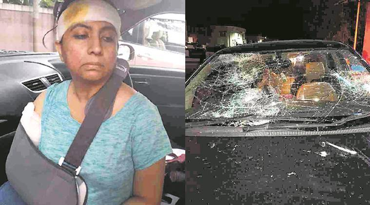 Woman animal rights activist attacked by mob in Bengaluru