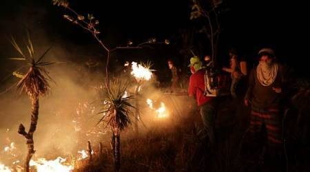 Hundreds of volunteers help control wildfire in Brazil