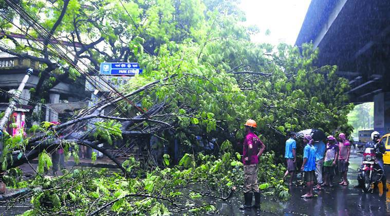 Mamata Banerjee, kolkata rains, kolkata water logging