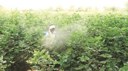'Deaths of farmers from pesticide genocide by state,' says farmer welfare task forcechief