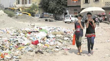 Garbage piles up in east Delhi as sanitation workers begin strike