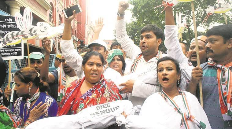 dengue in bengalm dengue outbreak in bengal, mamata banerjee, bengal congress, bengal bjp, Adhir Chowdhury, dilip gosh, dengue deaths, dengue protests, kolkata