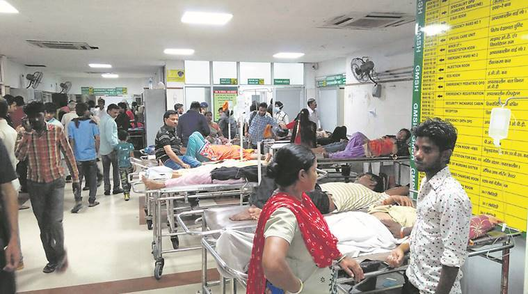 dengue news, malaria news, chandigarh news, indian express news