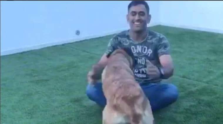 ms dhoni, dhoni dog, dhoni pet, dhoni pet dog, cricket news, sports news, indian express
