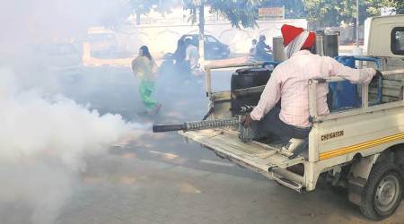 Mohali reports 143 more dengue cases in a day