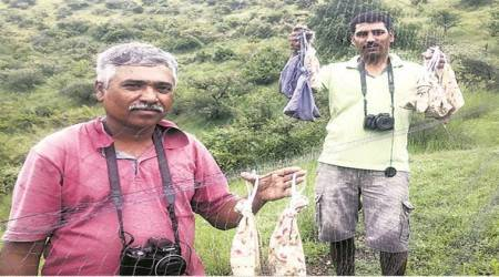 At Pingori village, a mist net, sighting some rare birds and tracking avian influenza