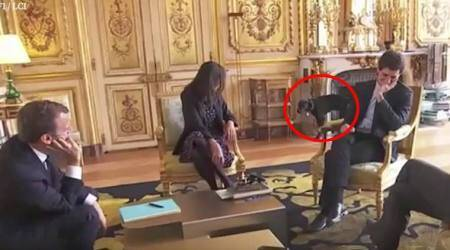 VIDEO: France 'first dog' interrupts President Macron meeting by peeing on fireplace