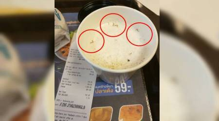 Yikes! Thai man finds cockroach legs in his McDonald's coffee