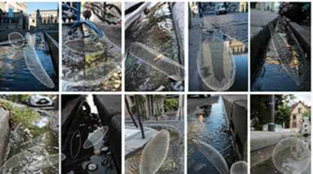 Street gutters, microscopic life, BOREA France research unit, Max Planck Institute for Terrestrial Microbiology, microalgae, fungi, sponges, mollusks, rainwater cleaning, urban waste management, gutter ecosystems, Paris city streets, eukaryotes, non-potable water sources