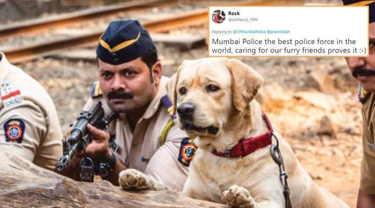 mumbai police, world animal day, animal welfare day, animals, save animals, nature, wild life, mumbai police tweets, twitter reactions, indian express. indian express news