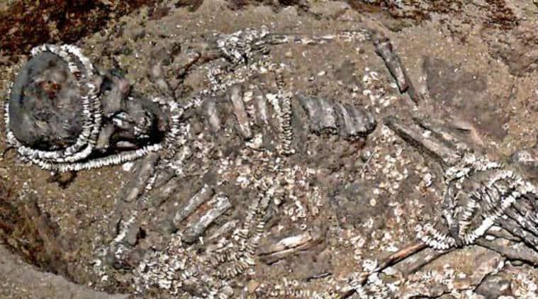 Early humans, social mating networks, inbreeding, University of Copenhagen, prehistoric humans, neanderthals, University of Cambridge, Sunghir, human fossils, Upper Paleolithic