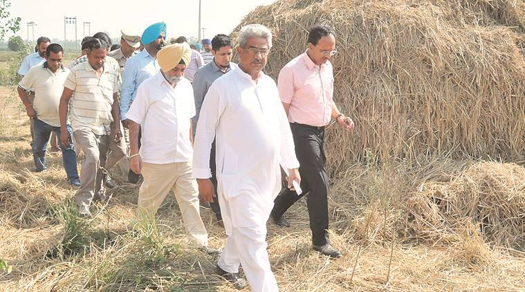 paddy straw burning punjab, jalandhar villages paddy burning, stubble burning in punjab, punjab villages, stubble burning, crop burning, punjab news, indian express news