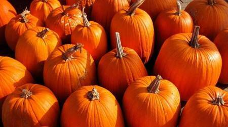 halloween 2017, pumpkin, health benefits of pumpkin, pumpkin for hair, pumpkin for skin, heart diseases, diabetes, indian express, indian express news