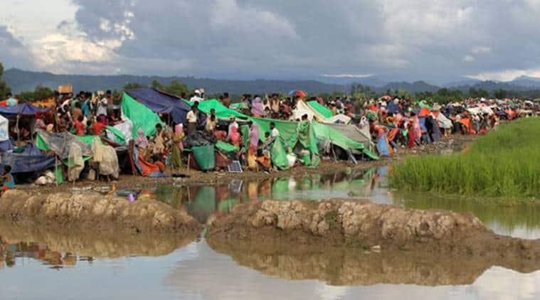 Rohingya, Rohingya issue, Rohingya crisis, Bangladesh, Bangladesh Rohingya crisis, Bangladesh deputy high commissioner, Toufique Hasan, Bangladesh news, world news, indian express news