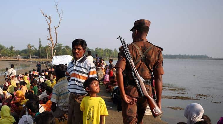 rohingya, rakhine state, myanmar, national verification cards, nvc, rohingya verification, indian express