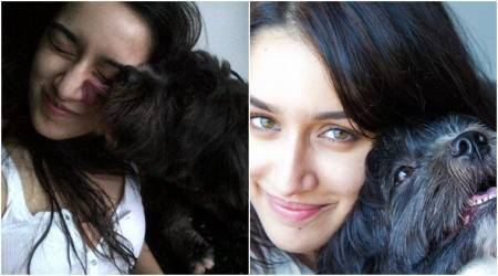 Shraddha Kapoor takes stand for animals this Diwali in her Twitter video