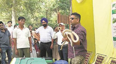 Chandigarh: Expert spreads awareness about snakes to visitors at Chattbir zoo