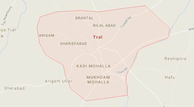 Two women shot at in Tral, 1 dies, 1 critical