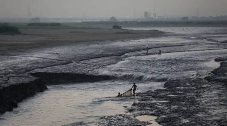 yamuna pollution, Yamuna, yamuna debris, NGT, yamuna idol immersion, yamuna floodplain, yamuna water pollution, yamuna river, delhi news, indian express news