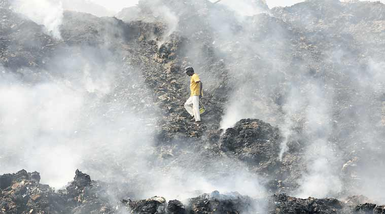 NGT to check on proposed landfills near Yamuna