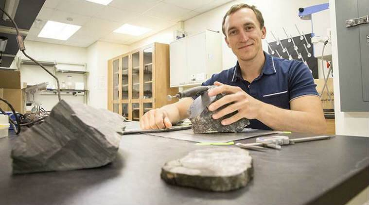 A research team from University of Wisconsin-Milwaukee discovered fossils of Antarctic forest trees during the summer