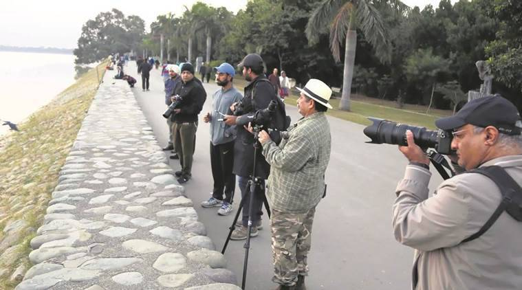 bird watchers, bird counting, sukhna lake, chandigarh, indian express