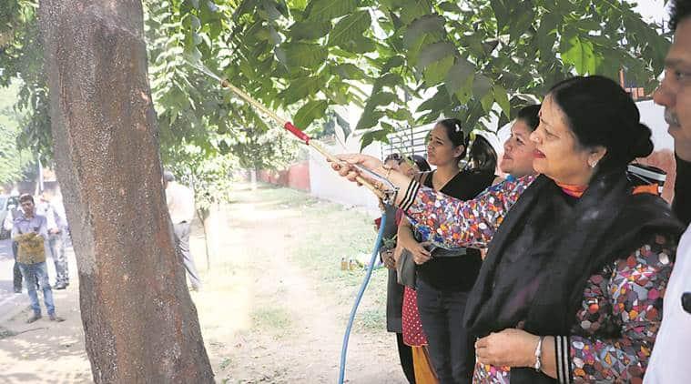 Chandigarh mayor, mayor of chandigarh, chandigarh news, indian express news, Mayor Asha Jaswal, mayor launches campaign