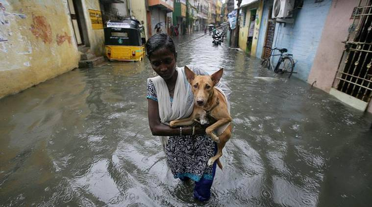 chennai rain photos, chennain monsoon 2017 images, monsoon in chennai, rains chennai 2017 pictures, chennai weather images, chennai rains pics, chennai rains latest pics, indian express