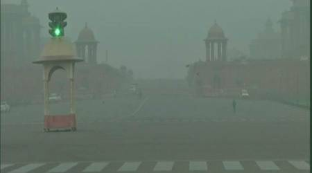 Lung capacity of Indians 30 per cent lower than N Americans: Scientist