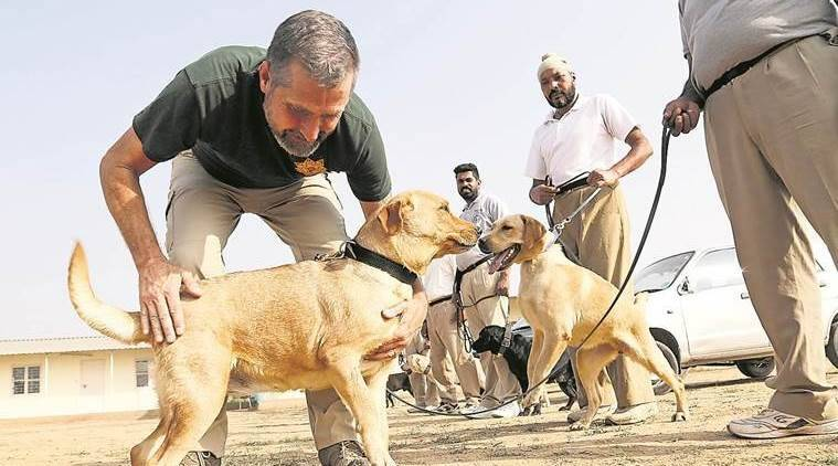 dog training centre, punjab home guard canine training, army dogs training institute, Micheal G Morgan, indian express