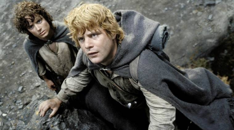 Image result for Sean Astin LOTR