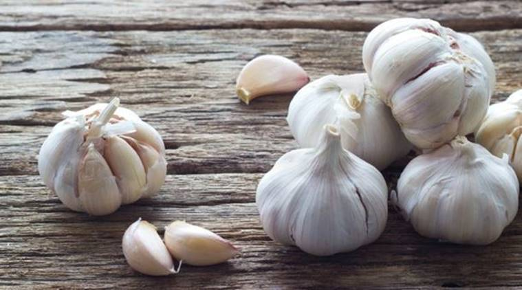 Garlic, chronic infections, chronic pain, chronic stress, chronic diseases, indian express, indian express news