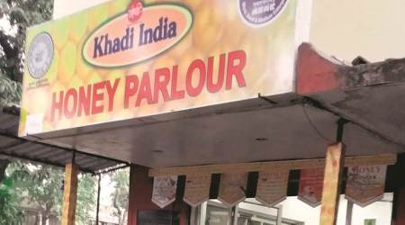 Pune: Central Bee Research and Training Institute parlour to launch two new variants of honey