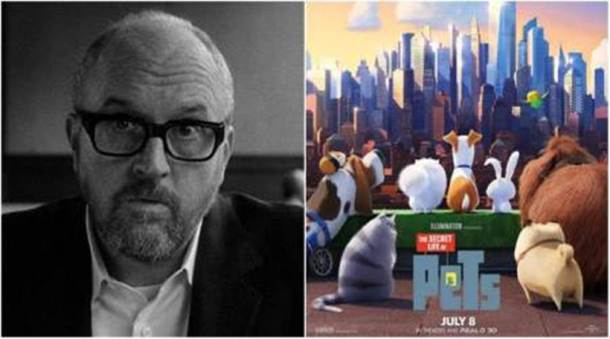 louis ck, louis ck the secret life of pets, louis ck sexual harassment allegations, louis ck sexual harassment, louis ck PIC
